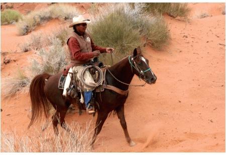 Arizona Outlawu00b4s Cochise M.R.